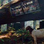 Coast Redwood (S/F)