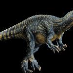 Suchomimus tenerensis (S/F)