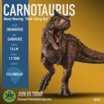 Carnotaurus sastrei (S/F)