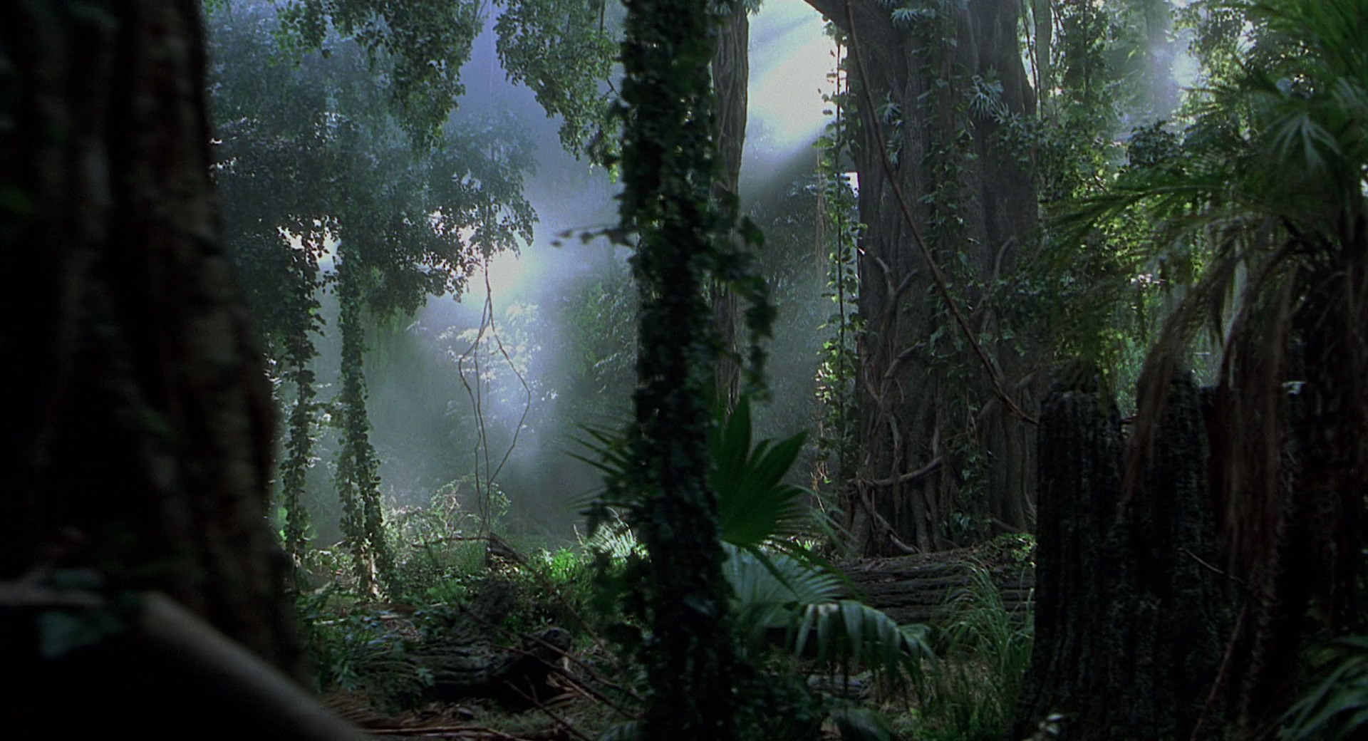 jp3 jungle woods